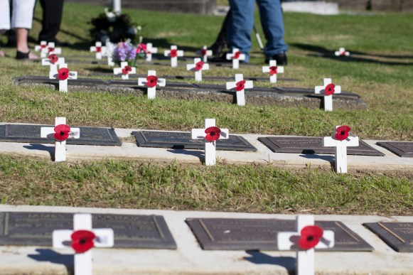 gravestones with tiny white crosses and red poppies