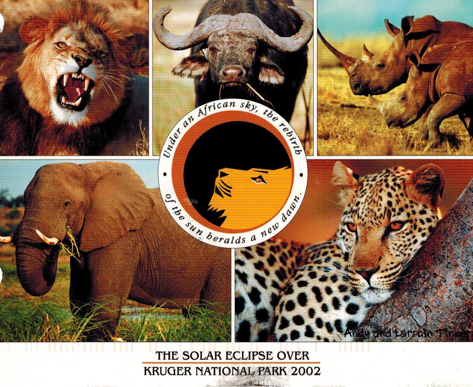 safari eclipse