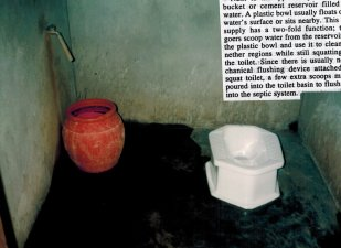 Islands toilet