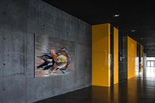 Mandarin Drake Hung on Wall, Art by Kat Skinner