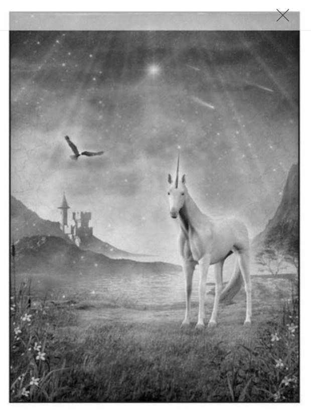 Unicorn3.jpeg