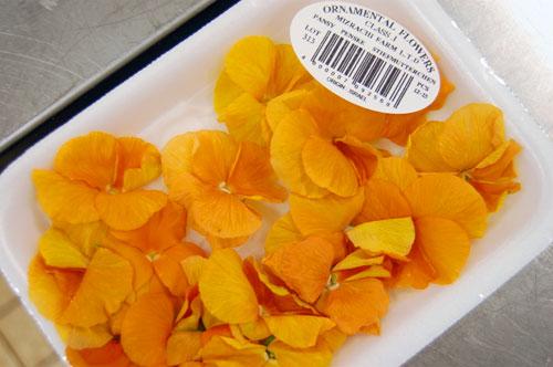 Fleurs ornementales alimentaires