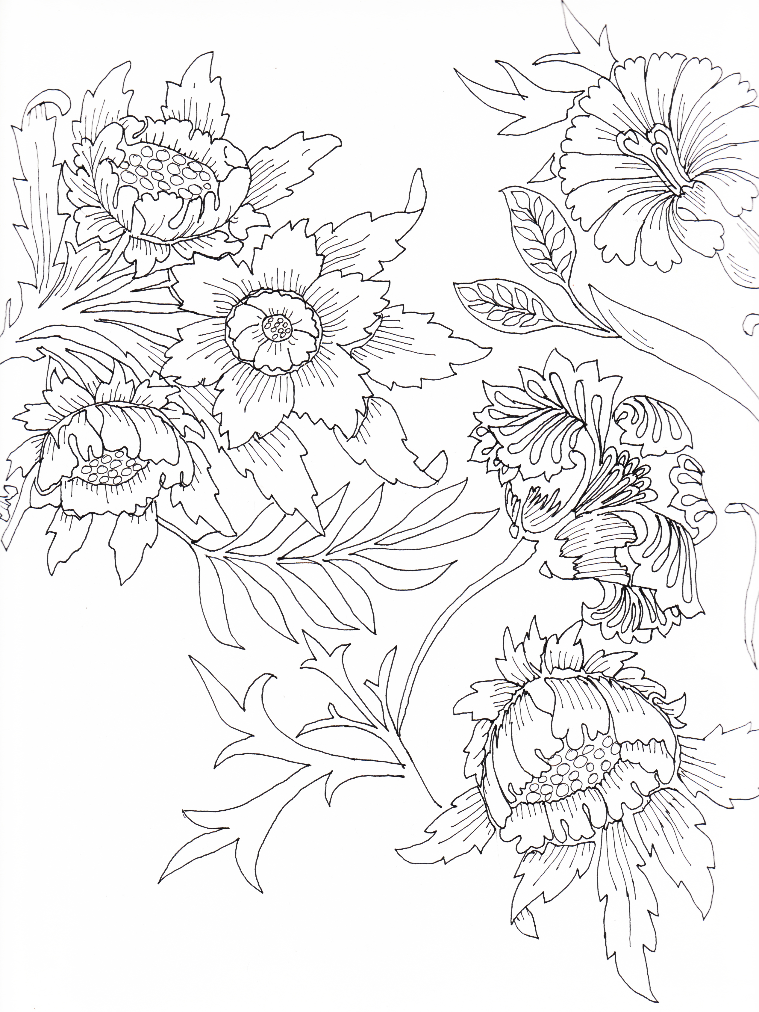 1000+ images about Flowers to Color on Pinterest