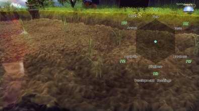 Au début, l'évolution du riz est... déprimante.