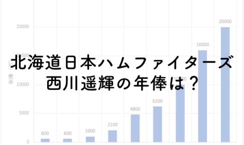 北海道日本ハムファイターズ西川遥輝の年俸は?2019年は2億円!のアイキャッチ画像