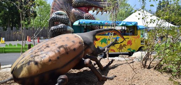 巨大昆虫ツアー