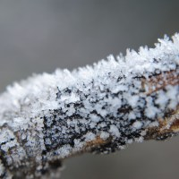 Sunday Photo Fiction - A Cold Snap