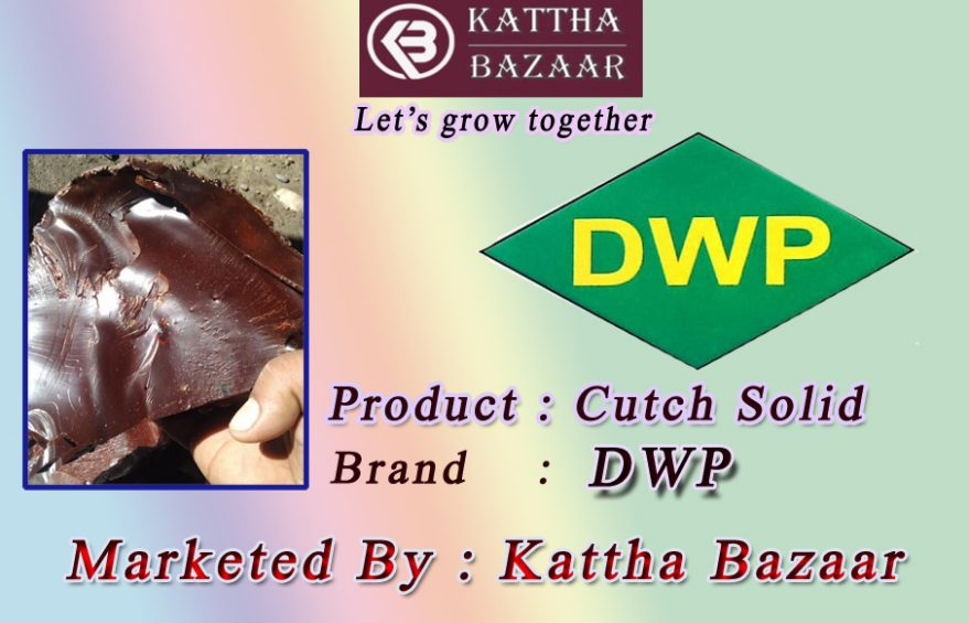 DWP Brand Cutch Solid