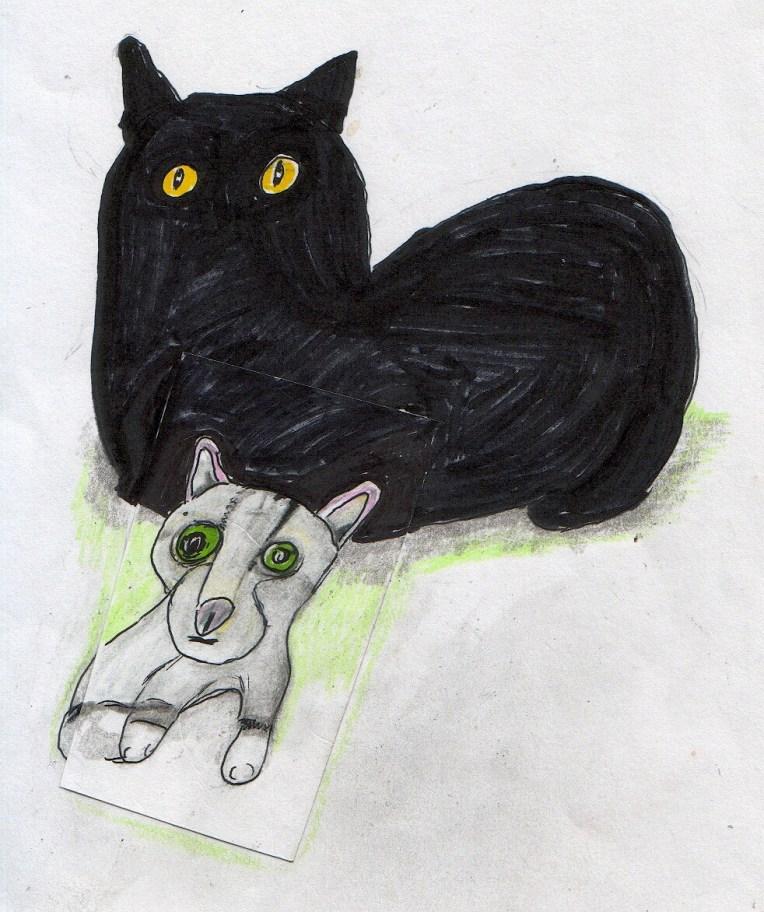 nov-8-cats