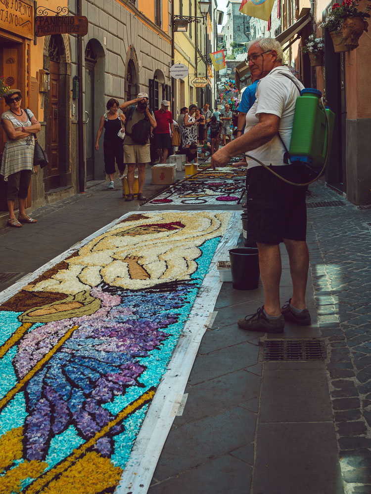 watering the flowers at the infiorata because they stay fresh and don't fly away