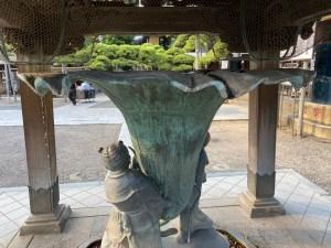題経寺 朝顔
