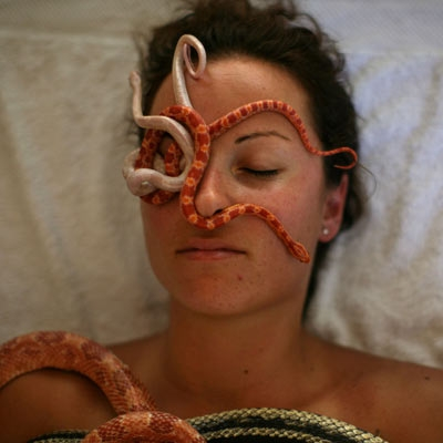 Snake massage (photo courtesy TMZ)