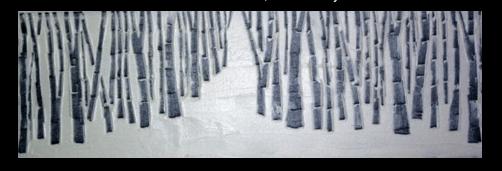 """""""The Path"""" Birches Series (c) Katy Allgeyer"""