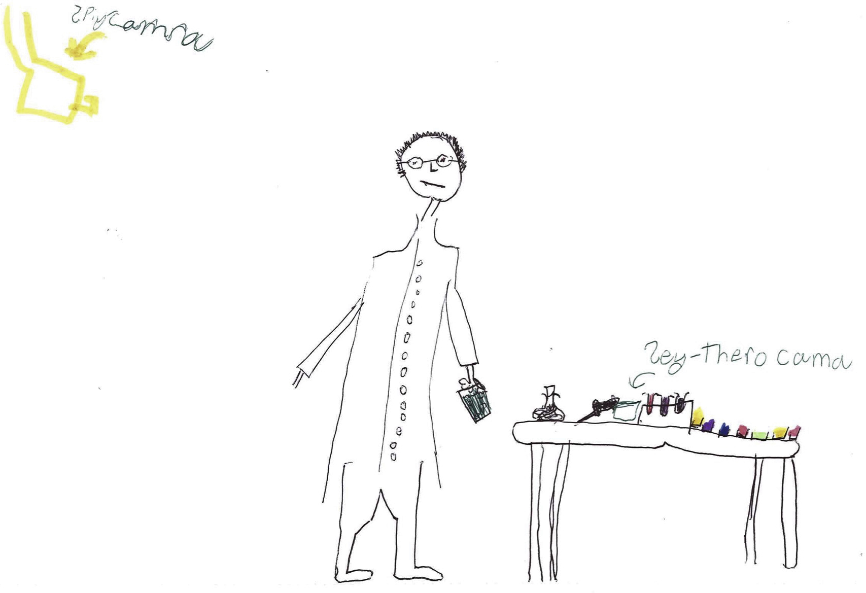 The Draw-A-Scientist Test