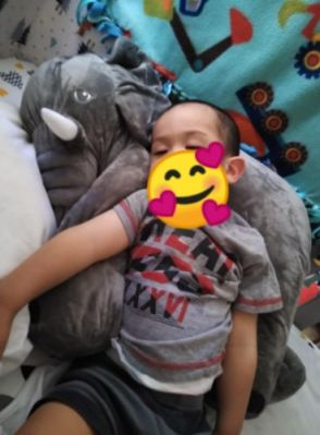Cute Giant Elephant Cuddle Hug Plush Toy For Babies photo review