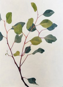 Eucalyptus Sprig Acrylic Ink on Board