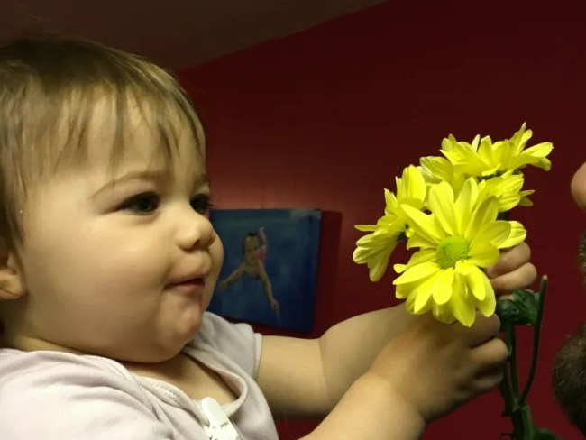 Daisy is 15 months old - Daisy really thrilled to hold flowers.