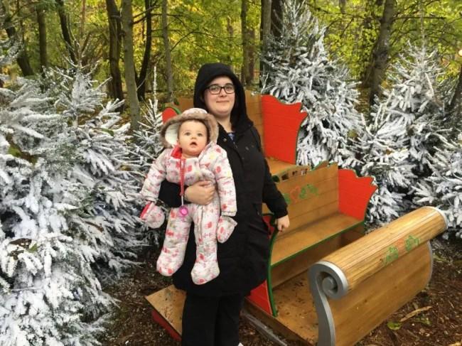 Santa's Woodland Workshop - Santa's sleigh