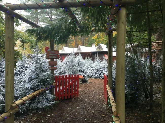 Santa's Woodland Workshop - The entrance