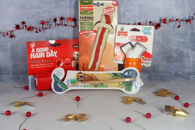 2018 Christmas Gift Guide for Pets - Nylabone and Mikki