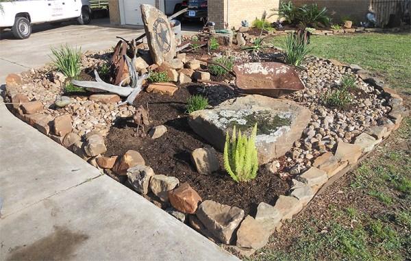cactus rock garden - katy landscaping