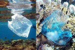 plastic-bags-in-ocean-EPA