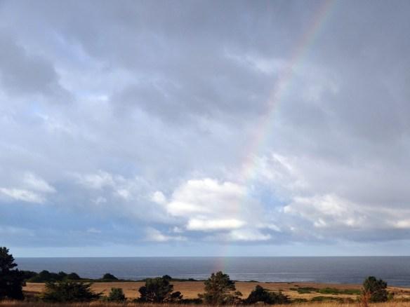 After rain photo by Katy Pye