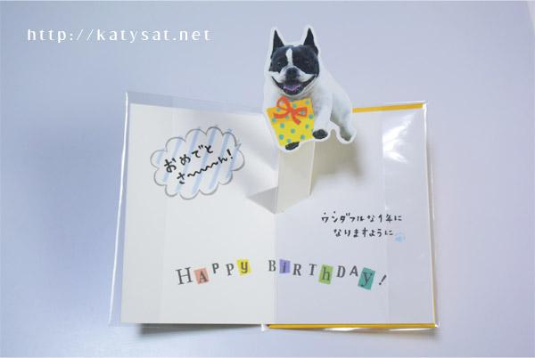 学研ステイフル BD動物ポップカード(犬)B28-091