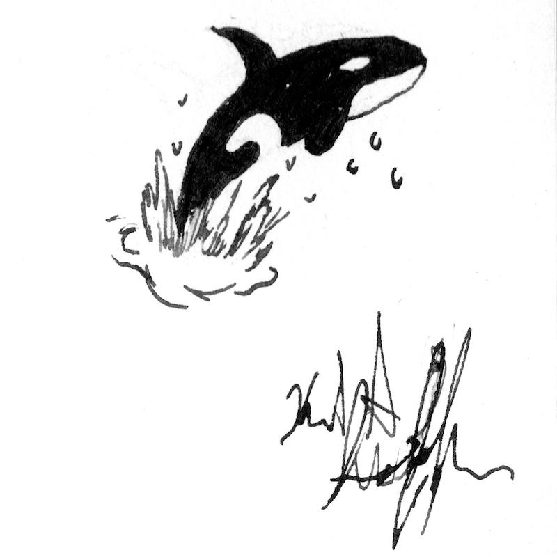 #inktober #inktober2018 day 12: whale