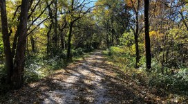 Katy Trail in Autumn