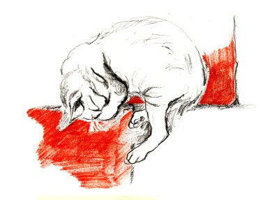 Terracotta cat