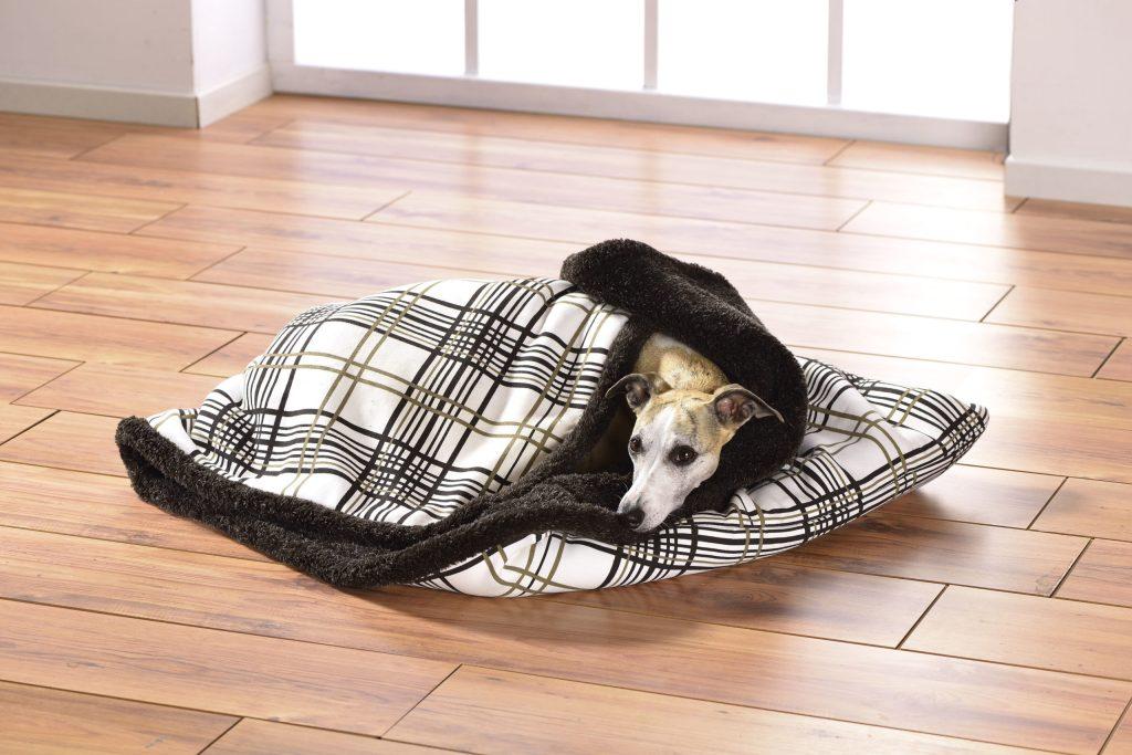 In einem Hundeschlafsack kommen Vierbeiner zur Ruhe.