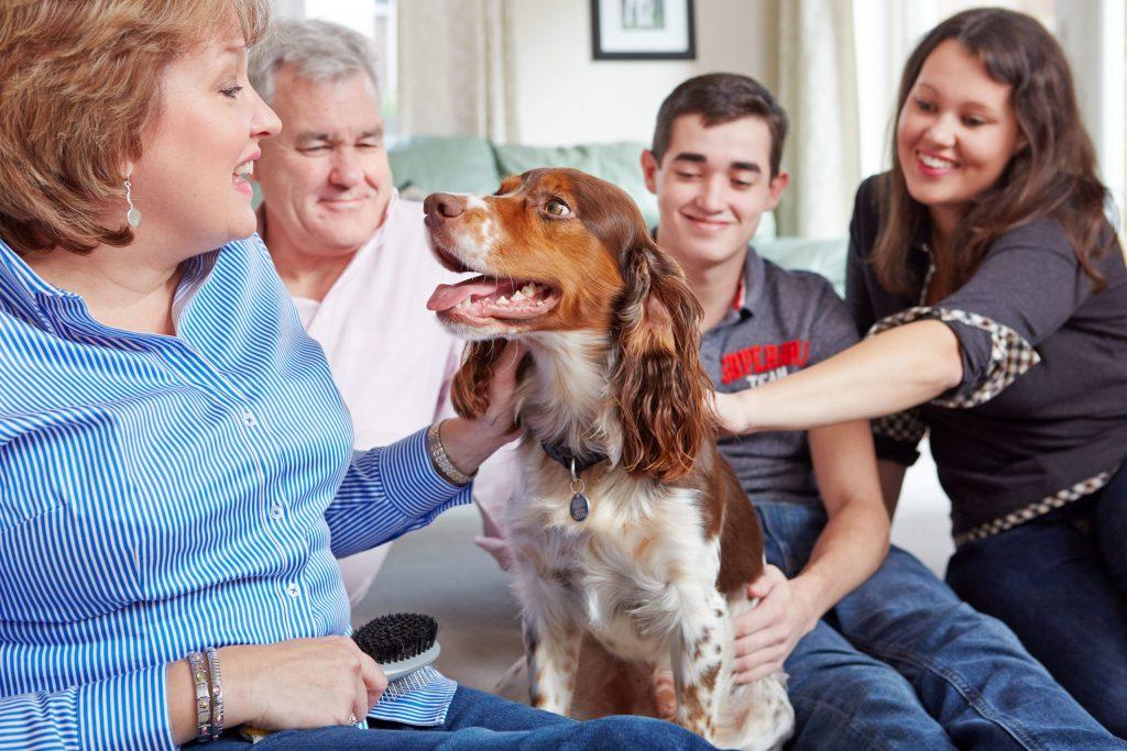 Liebevolle Nähe und souveränes Auftreten helfen ängstlichen Hunden, die Silvesternacht besser zu überstehen.