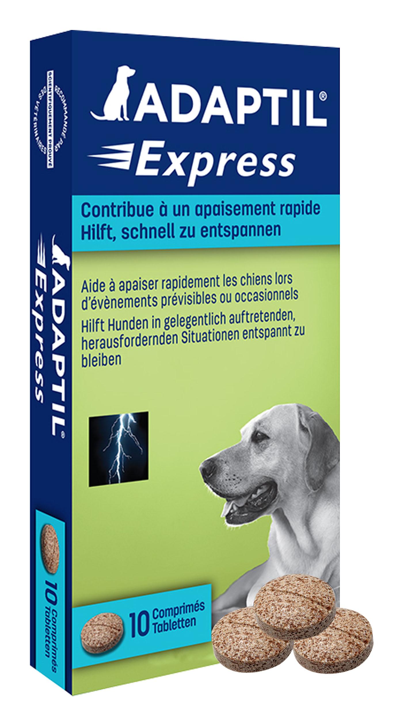 Die Tabletten können wie ein Leckerli gefüttert werden und helfen dem ängstlichen Hund, sich schnell zu beruhigen.