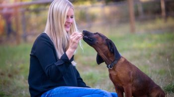 Frau gibt ihrem Hund ein Leckerli - Leckerlis