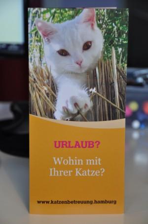 GOLD CAT Katzenbetreuung Hamburg Flyer - Urlaub- Wohin mit Ihrer Katze