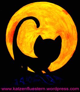 Vollmond und Katzen