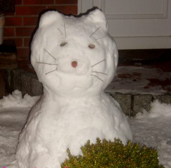 Schnee auf dem Katzenblog