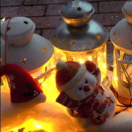 Tiersichere Weihnachtszeit