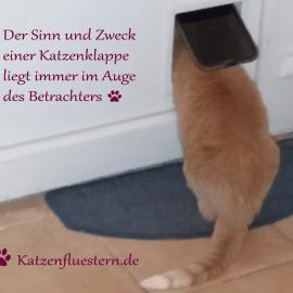 Katzenklappe einmal anders