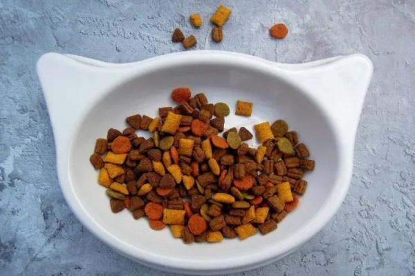 Vergleich von Trockenfutter und Nassfutter