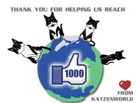 Katzenworld1000likes
