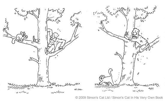 193_R_TreeClimb3