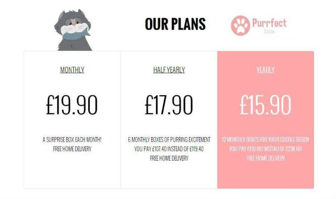 Purrfect Box Subscription Info