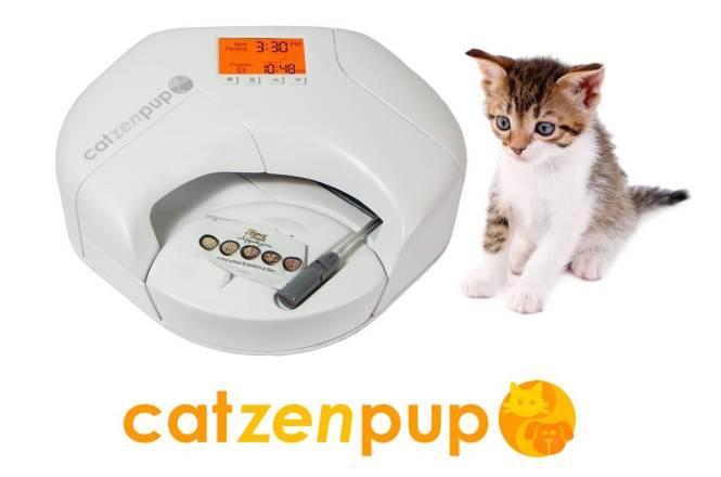 Catzenpup - Fancy Feast w Cat