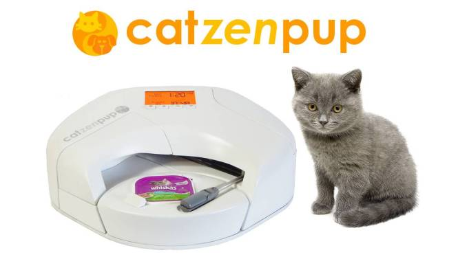 Catzenpup - Whiskas w Kitten