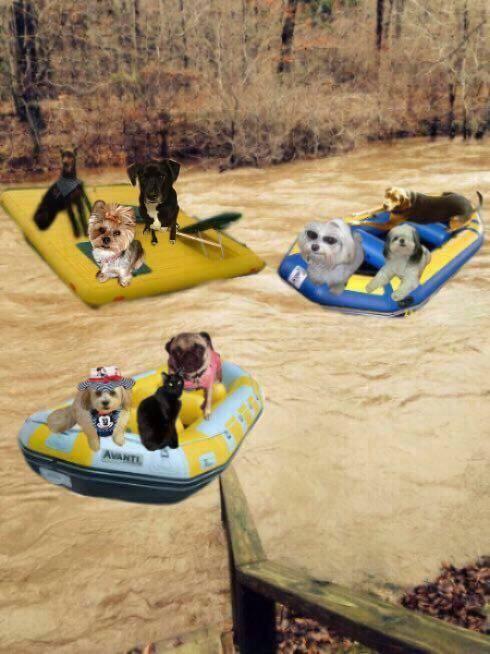 Friendly on raft ride