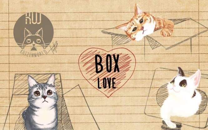 Box Love