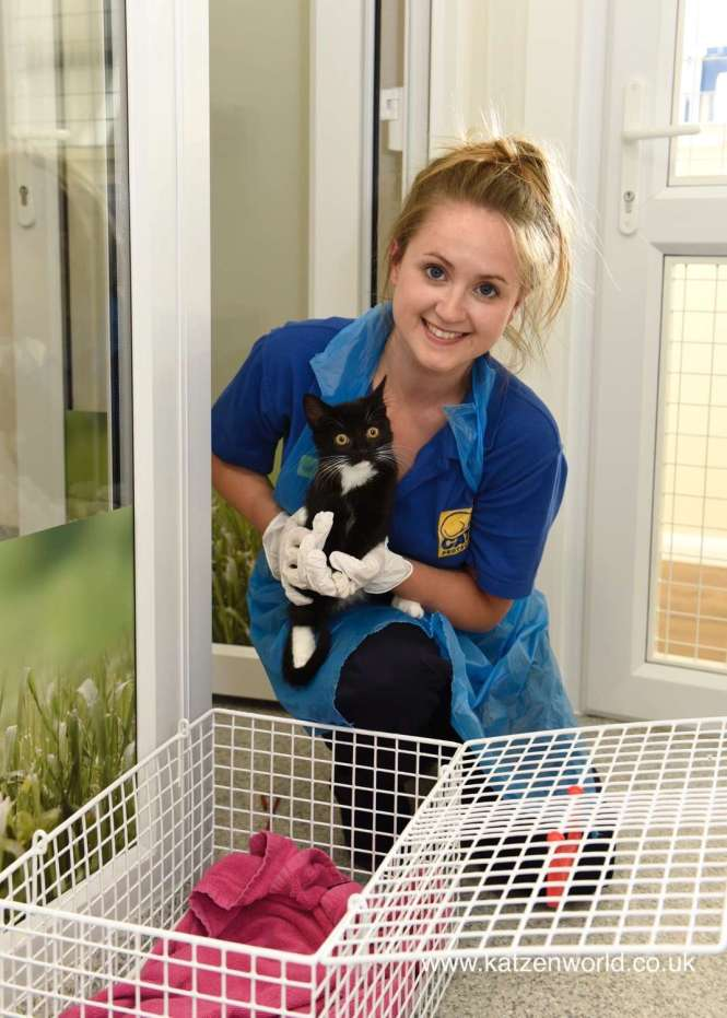 Cats Protection Mitcham Homing Centre