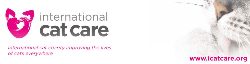 international cat care banner